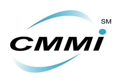 2008 CMMI培训资料集