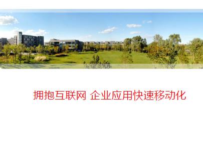 杨黎-企业应用快速移动化