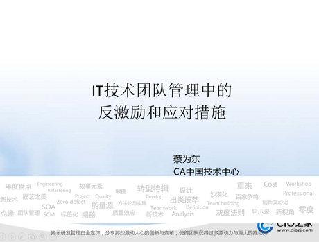 蔡为东-IT技术团队管理中的CA