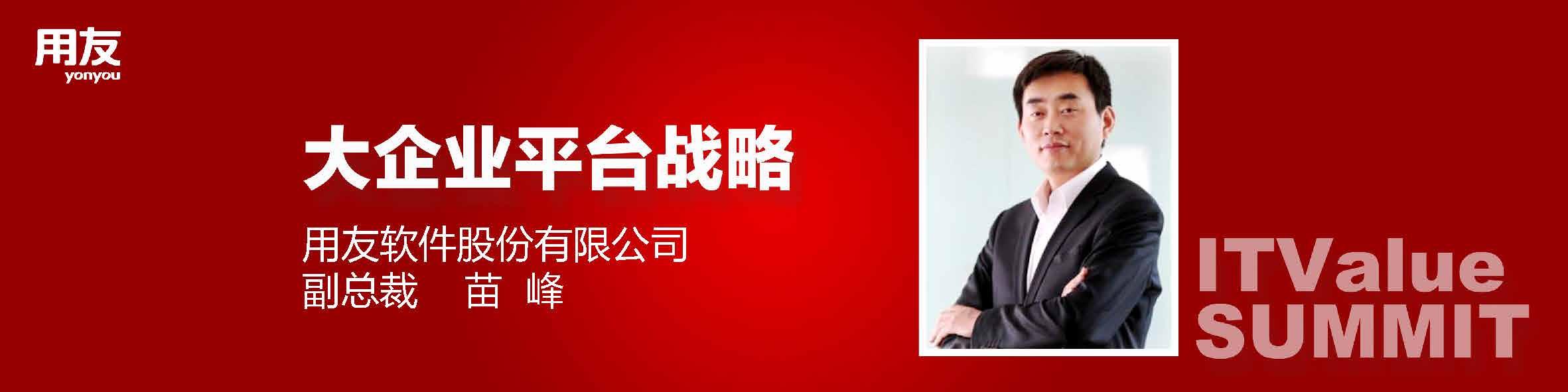 苗峰-大企业平台战略