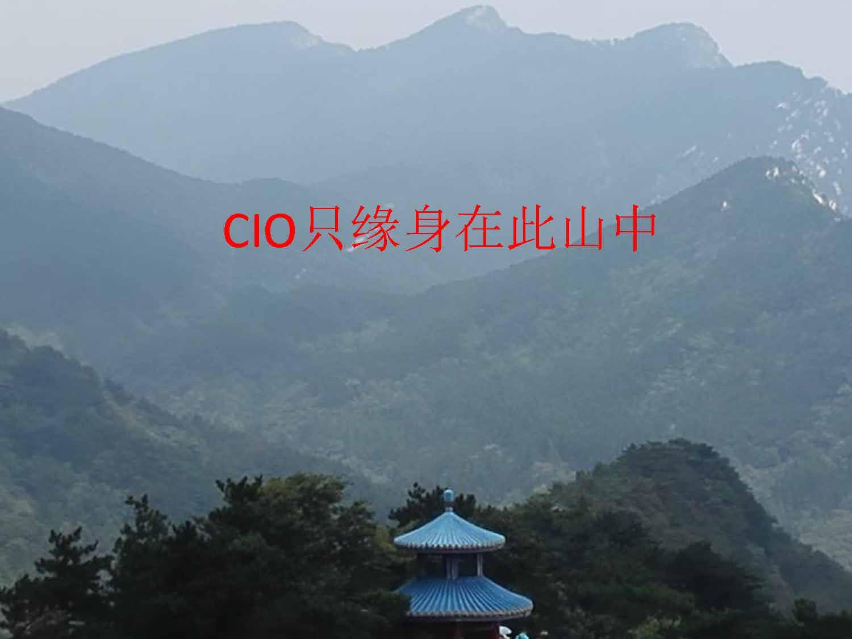 郭强-CIO只缘身在此山中