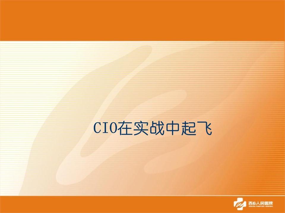 CIO-CIO在实战中起飞