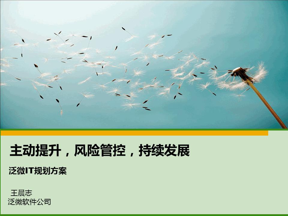 王晨志-泛微IT规划方案