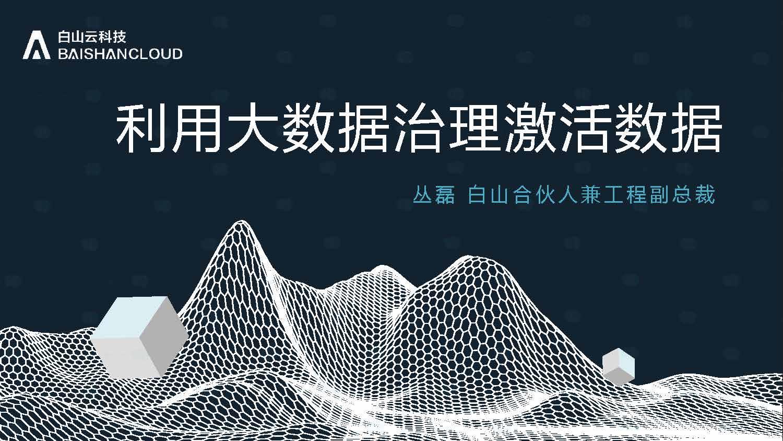 丛磊-让大数据治理激活数据