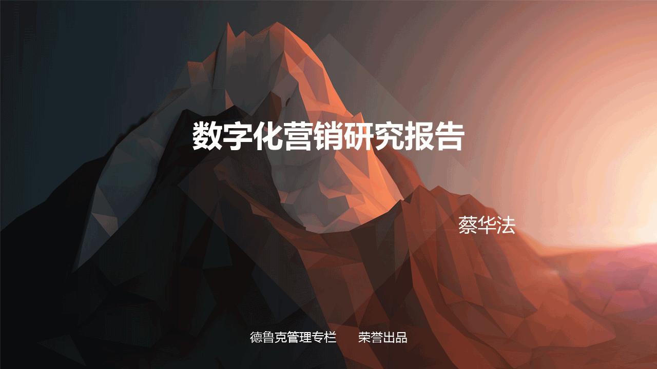 蔡华法-数字化营销研究报告