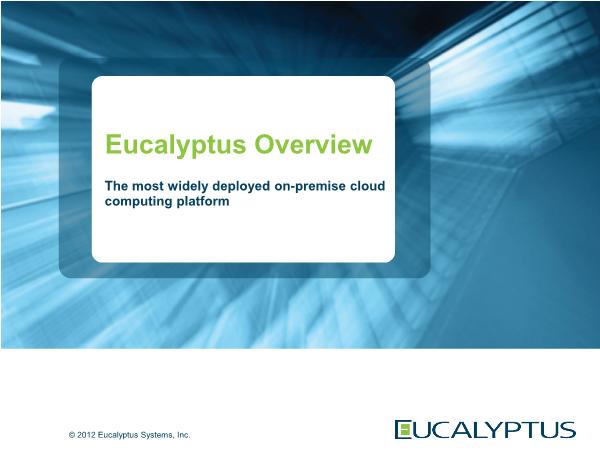 -Eucalyptus Overview