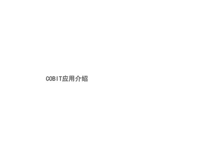 -Cobit模型介绍