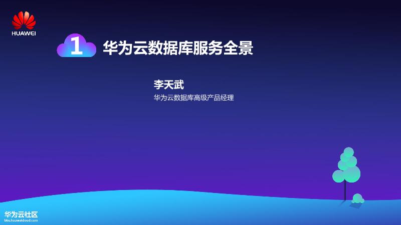 李天武-华为云数据库服务全景