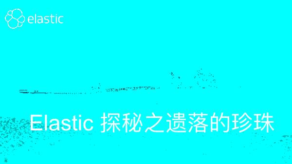 曾勇-Elastic 探秘之遗落的珍珠
