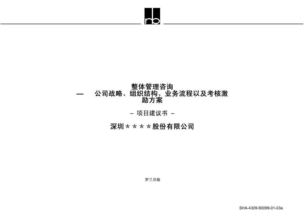 -罗兰贝格项目建议书标准模板