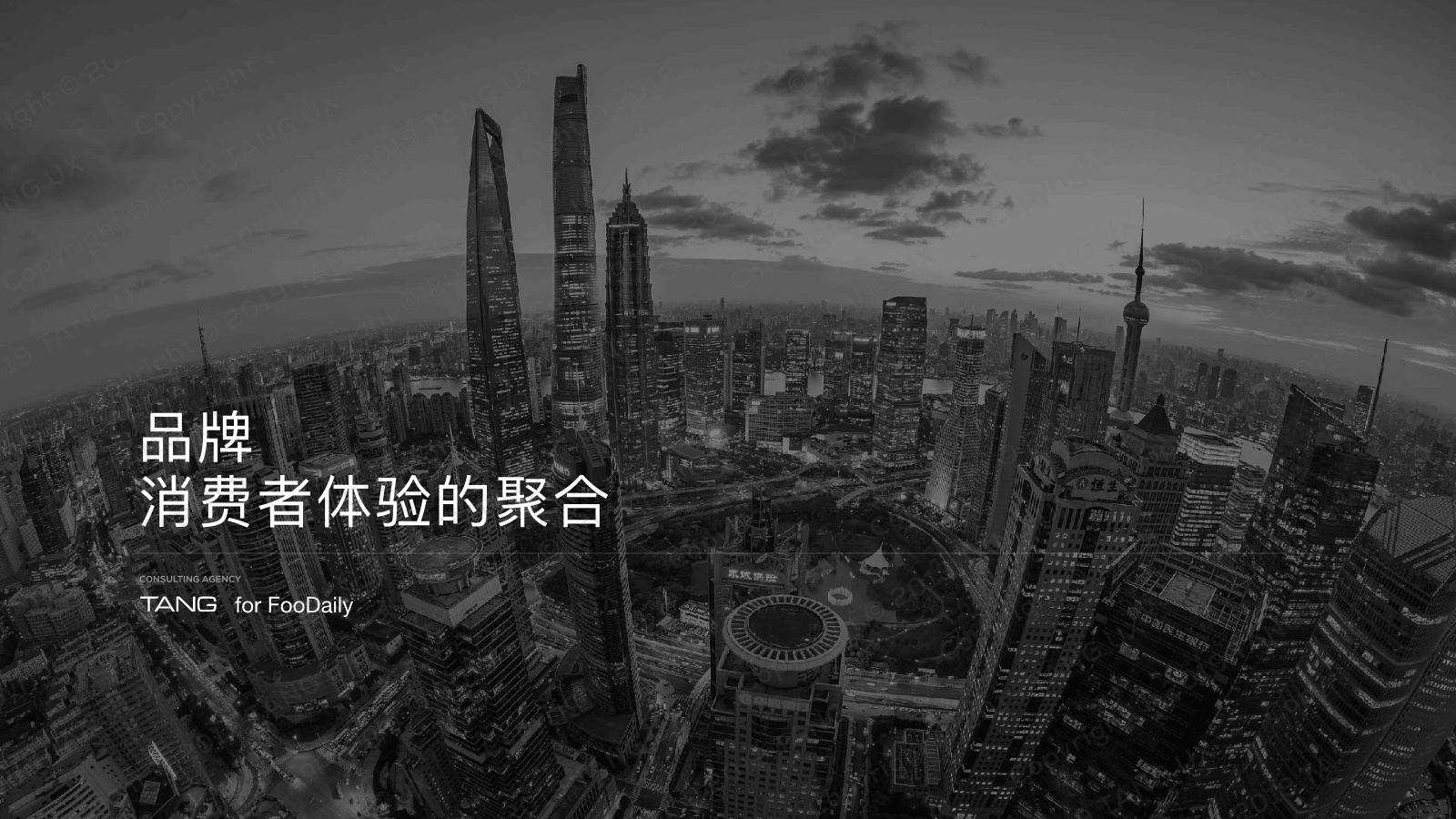 黄峰-品牌消费者体验的聚合