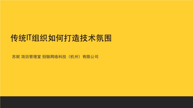 苏妮-传统企业IT组织技术氛围打造