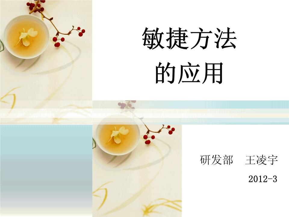 王凌宇-敏捷SCRUM方法的推广及实例