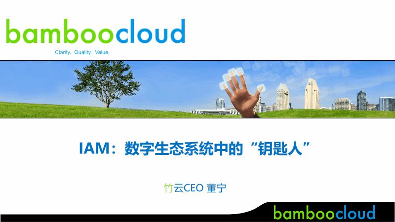 """董宁-IAM 数字生态系统中的""""钥匙人"""""""