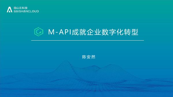陈安然-数聚蜂巢用API成就企业数数字化转型