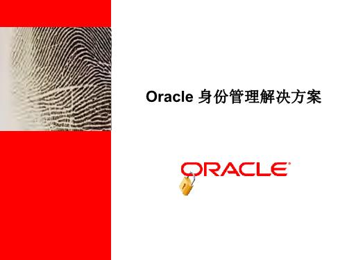 -Oracle 身份管理解决方案