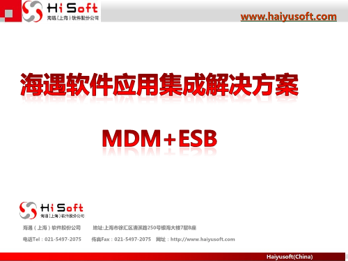 -海遇软件主数据管理MDM+ESB解决方案