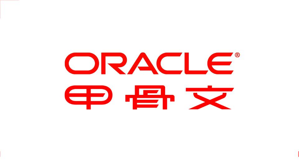 -Oracle HCM解决方案