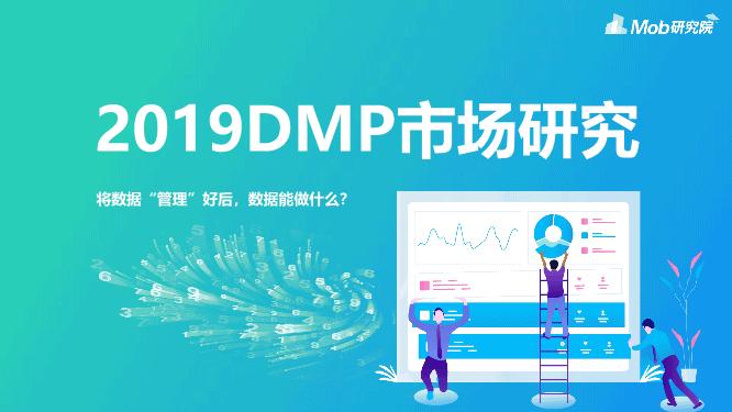 -2019年DMP市场研究