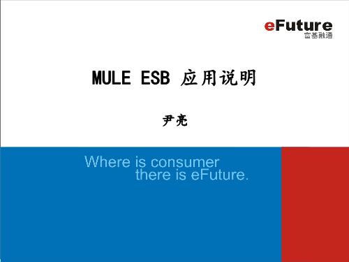 应亮-Mule ESB应用说明
