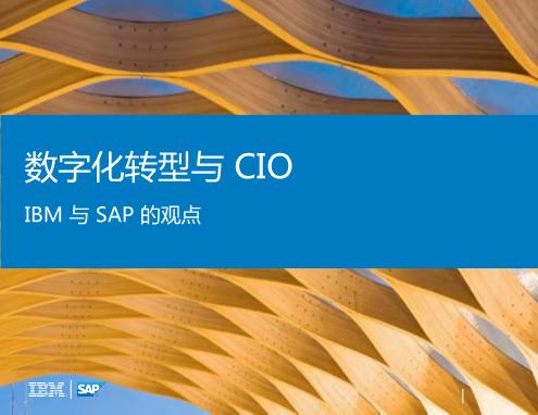 -IBM与SAP的观点 数字化转型与CIO