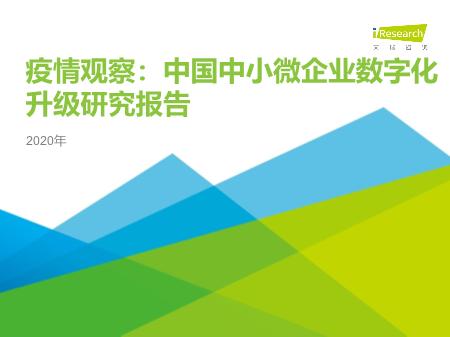 -中国中小微企业数字化升级研究报告