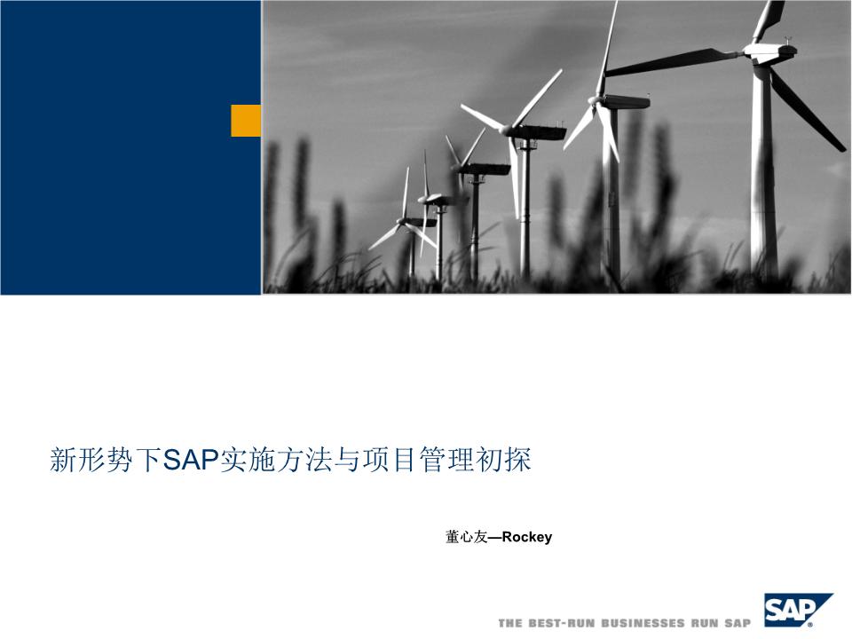 董心友-新形势下SAP项目管理初探