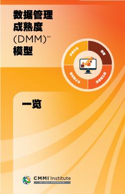 -数据管理成熟度模型