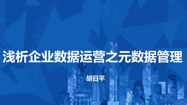胡日平-企业数据运营之元数据管理