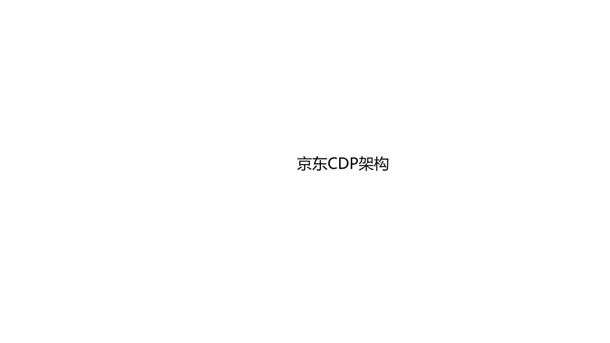 吴帅-京东CDP架构