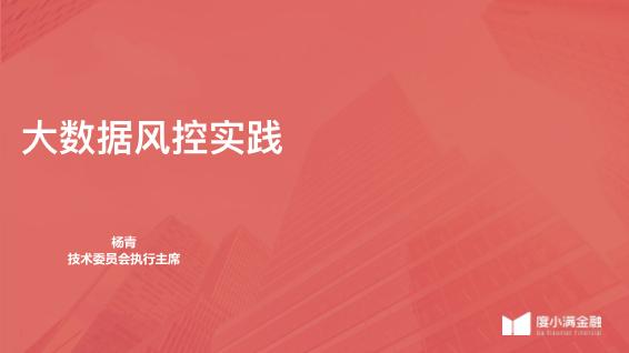 杨青-大数据风控实践